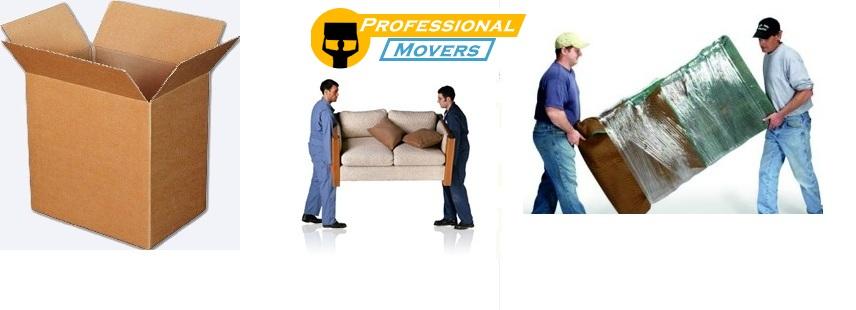 Pandemia este perioada ideala pentru mutat Professional Movers