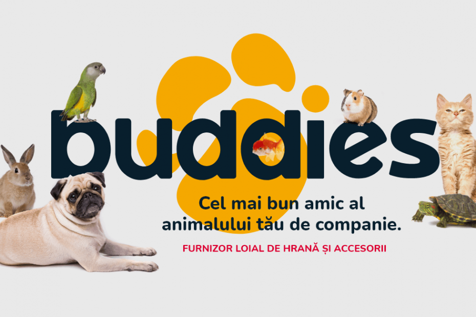 buddies pet shop caine pisica broasca testoasa
